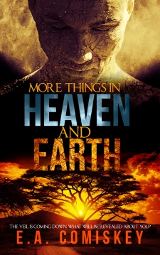 heaven-and-earth-Amazon